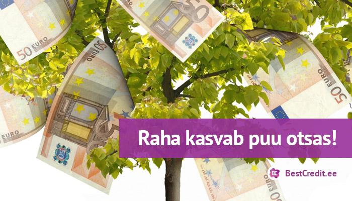 Raha kasvab puu otsas!